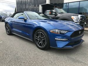 Ford Mustang EcoBoost D?capotable Automatique