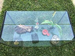 Hermit crab tank and ornaments Wynnum Brisbane South East Preview
