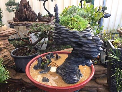 Penjing Bonsai Style Hon Vong Phu