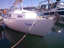 Quest 8 Meter -  Pocket Cruiser Racer  -   7x Sails Manly West Brisbane South East Preview