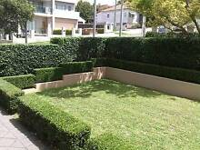 Lawnmowing ,Hedge Trimming, Gutter Cleaning, Gardening West Ryde Ryde Area Preview