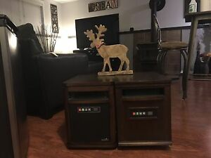 Two Infrared Heaters and A Moose