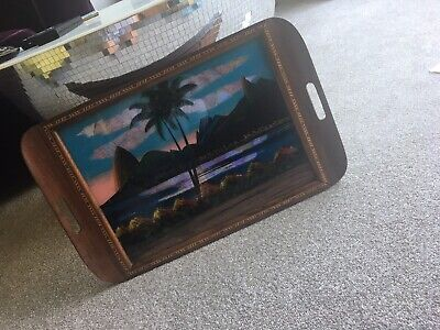 Butterfly Wing Tray Rare Rio Brasil
