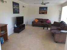 Room in House Share for Rent West Gladstone Gladstone City Preview