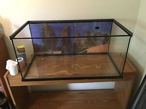 MINT BEARDED DRAGON ENCLOSURE