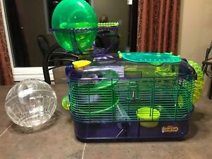 Hamster cage, water bottle and hamster ball