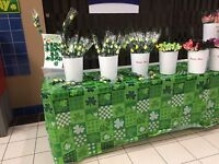 Wooden Roses - Victoriaville Centre/Mall - St Patrick's Day