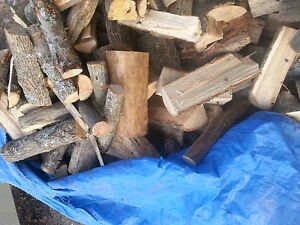 cut and split ash elm and cherry