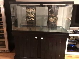 110 gallon salt water aquarium with stand , with over float