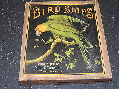Super Rare Bird Slips by Peter G Thompson Antique Bird Puzzles