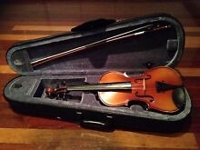 1/2 size Violin Point Vernon Fraser Coast Preview