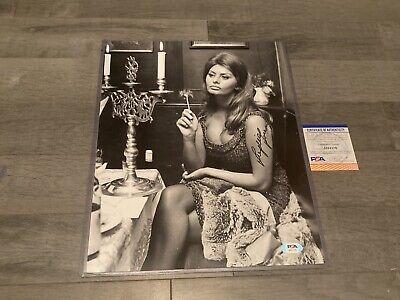 Sophia Loren Hand Signed 11x14 Photo Actress Sexy  Dress W/ TOP LOADER JSA COA