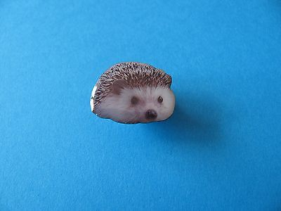 Cute Hedgehog Pin badge.