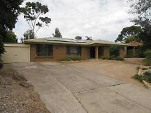 Aberfoyle Park, family home for sale Aberfoyle Park Morphett Vale Area Preview