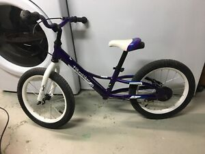16 Inch Wheel Runner / Kick Bike