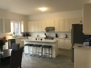 Huge New Kitchen Cabinets with Island, Pantry, S/S Appliances