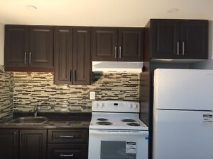 Brand new two bedroom basement apartment ajax