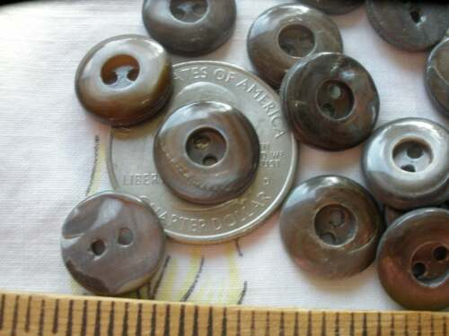 """24 Whistle Buttons Carved Brown Mussel shell MOP 1/2"""" 13MM 20L 2H Vintage swirl"""