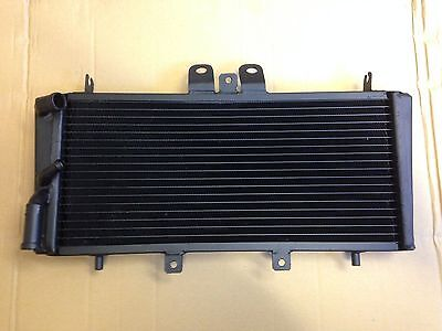 TRIUMPH SPEED TRIPLE T509 NEW RADIATOR
