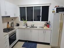 1 bedroom apartment for short term stay Ashfield Ashfield Area Preview