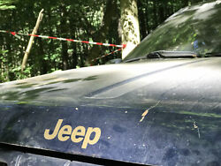 Jeep @ Wald-Trial