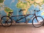 Tandem bicycle Maroochydore Maroochydore Area Preview
