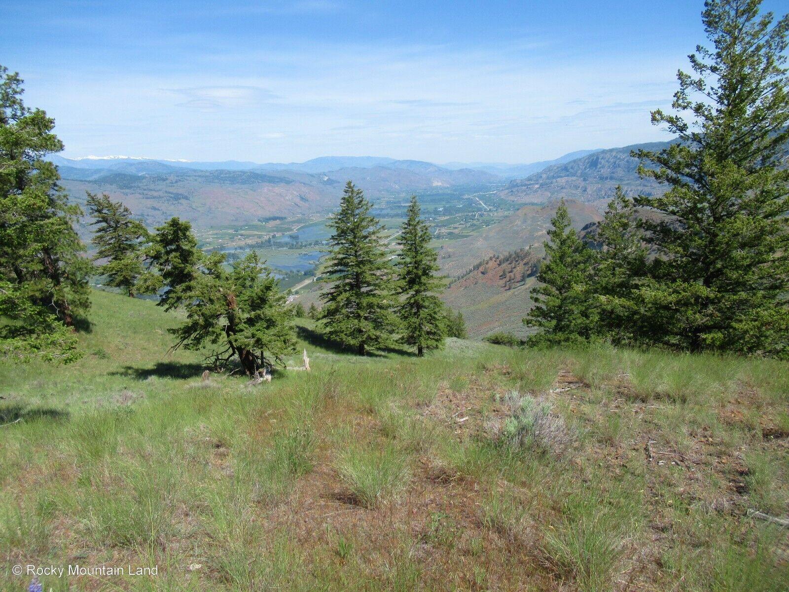 40.26 ACRES NORTHERN WASHINGTON PINE TREES, INCREDBILE RIVER VIEWS  - $4,050.00
