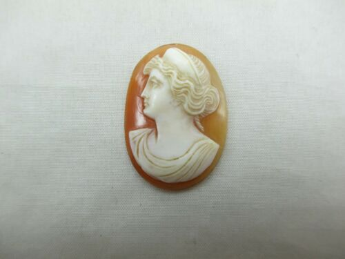 Vintage Antique Loose Carved Shell Cameo Convex Facing Left 30mm X 21.9mm 501E
