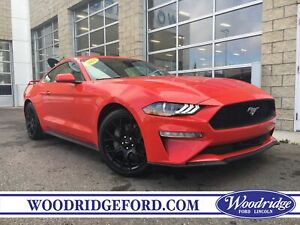 2018 Ford Mustang EcoBoost ***PRICE REDUCED*** NO ACCIDENTS,...