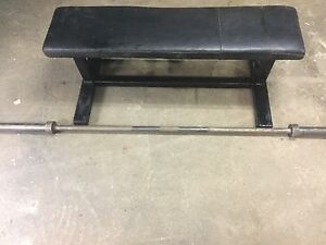 Olympic weight bar and bench , 50$