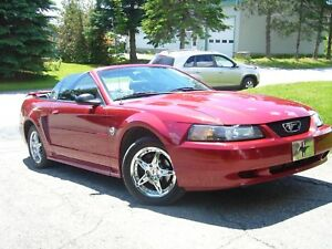 A VENDRE, Ford Mustang 2004 40th anniversary 3.9L Rouge