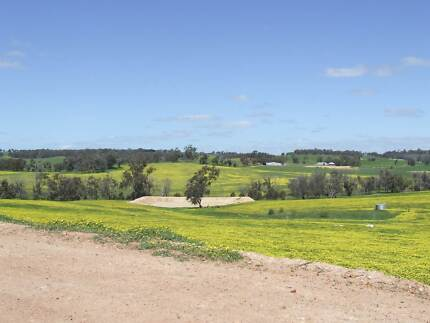 The Entertainer Hobby Farm For Sale Brookton Brookton Area Preview