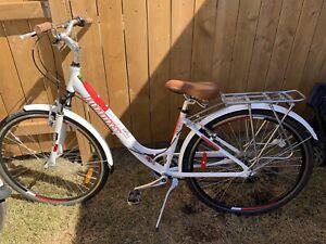 Infinity cruiser bike