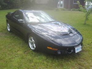 transam for sale