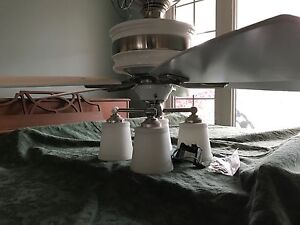 Ceiling fan and light.