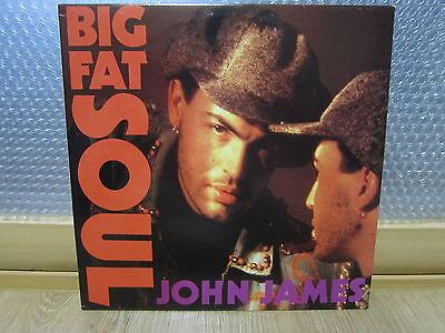 JOHN JAMES - Big Fat Soul Korea LP 1991 INSERT
