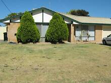 4 x 2 with large shed in Safety Bay $420pw Safety Bay Rockingham Area Preview