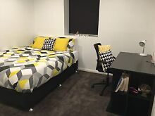 Large double room & lounge- 5 min to UNSW -includes bills Pagewood Botany Bay Area Preview