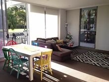 Double room to rent in Waterloo - 12th Dec Waterloo Inner Sydney Preview