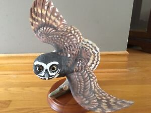 Franklin Mint-The Spectacled Owl