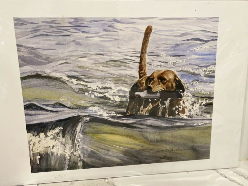 Chesapeake Bay Retriever With Bumper Ltd Ed Print 11x14 By Van Loan
