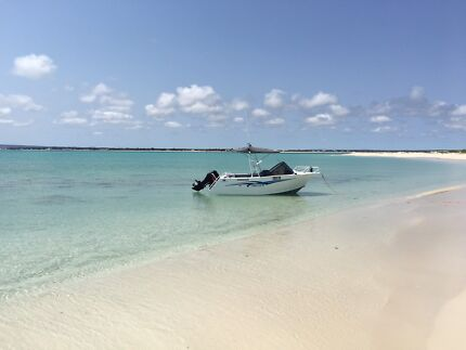 Trailcraft 510 freestyle
