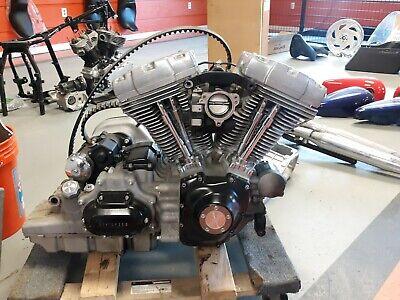 Harley 2009 96