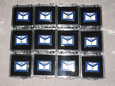Set of 12 Masonic Officers Apron Tac Pins Case Fraternity Freemason NEW!