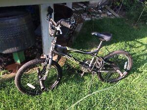 Mole BMX