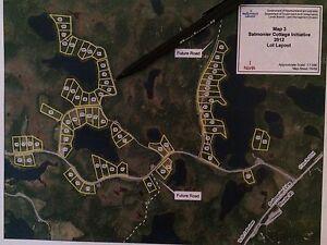 Cabin Land for Sale on Pond (Salmonier Line)