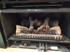 gas fireplace repair services in london kijiji classifieds. Black Bedroom Furniture Sets. Home Design Ideas