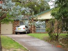 A room for rent in North lambton North Lambton Newcastle Area Preview