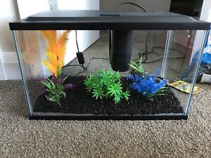 10 Gal aquarium with accessories