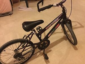 Sportex GroundBreaker 5 Speed bike 20""